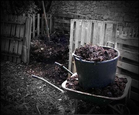 Composting Production Training Cebu, Philippines