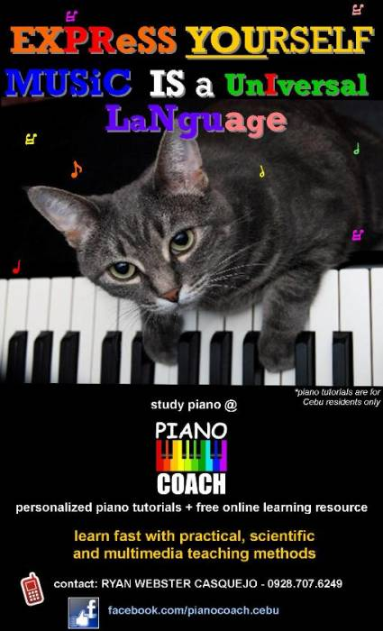 1st picture of PIANO LESSONS for beginners and enthusiasts Offer in Cebu, Philippines
