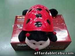1st picture of INTELLIGENT TURTLE! (WHOLESALE ONLY) For Sale in Cebu, Philippines