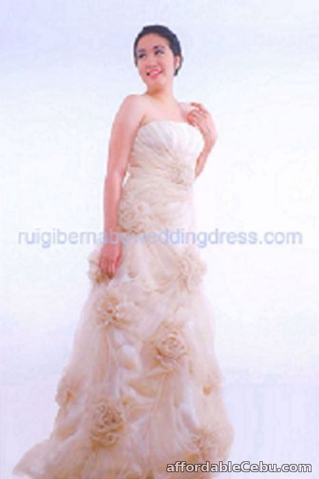 Filipiniana Gowns For Rent In Cebu | Male Models Picture