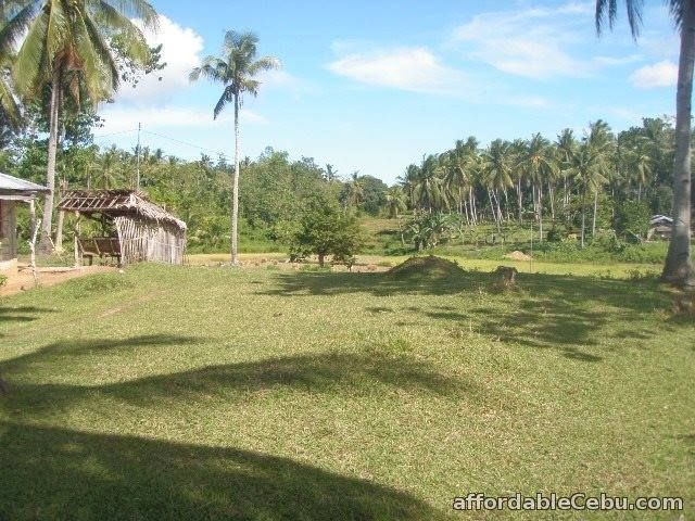 4th picture of Farm Lot For Sale in Ubay, Bohol For Sale in Cebu, Philippines