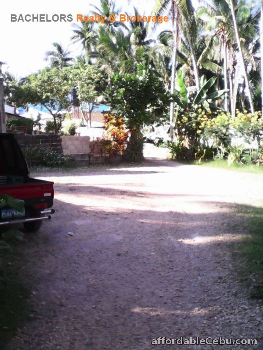 4th picture of Beach Resort for sale in Tabuelan Cebu 3,692 sqm For Sale in Cebu, Philippines