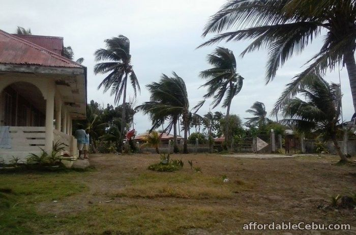 2nd picture of Beach Resort in Bantayan Island for rent For Rent in Cebu, Philippines