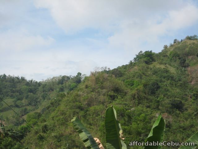 1st picture of 8 hectares Lot for sale in Toledo City Cebu 09233983560 For Sale in Cebu, Philippines