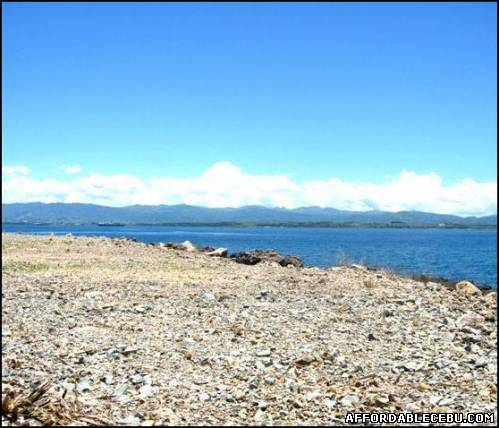 2nd picture of 364 sqm Beachlot in Discovery Bay Mactan For Sale in Cebu, Philippines