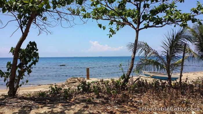 1st picture of Beach Lot in Carmen Cebu For Sale For Sale in Cebu, Philippines
