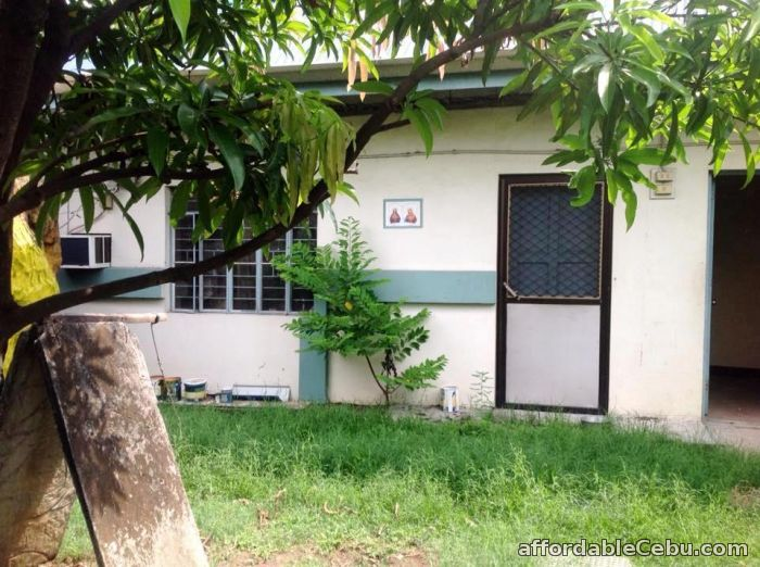3rd picture of house & lot (farm) For Sale in Cebu, Philippines