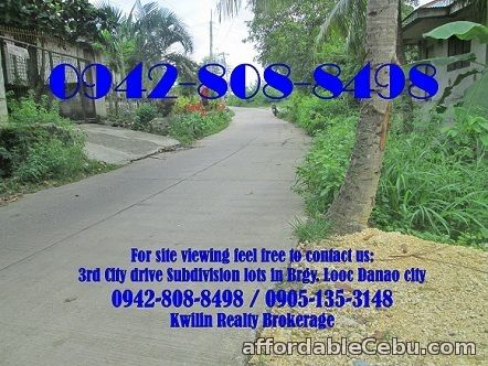 2nd picture of 3rd City Drive in Danao City Subdivision lots for sale For Sale in Cebu, Philippines