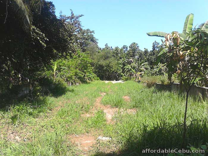 1st picture of Land for sale in Mandaue City Cebu 7,825 square meters For Sale in Cebu, Philippines