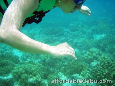 1st picture of Cebu tour package, with island hopping and lunch Offer in Cebu, Philippines
