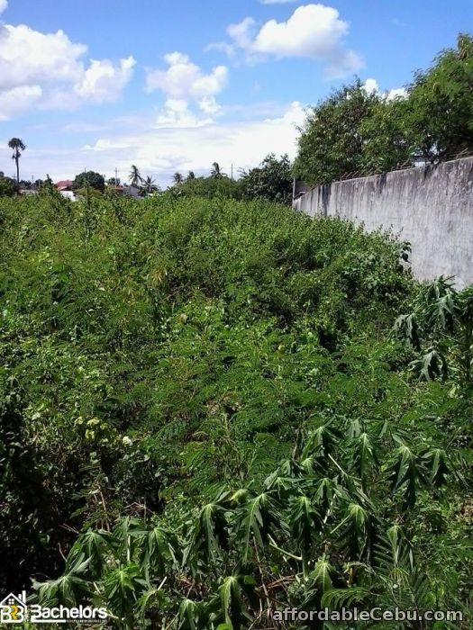 2nd picture of LOT FOR SALE For Sale in Cebu, Philippines