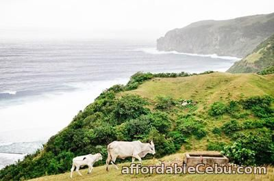 1st picture of Batanes Tour Package, 4 days 3 nights Offer in Cebu, Philippines