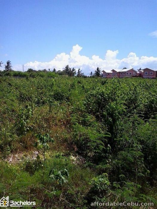 1st picture of LOT FOR SALE For Sale in Cebu, Philippines