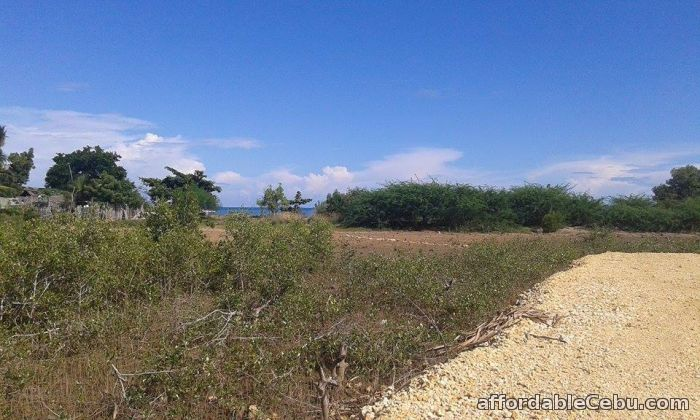 1st picture of Affordable Beach Lot in Cebu For Sale in Cebu, Philippines