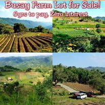1st picture of Affordabe lot only for sale in sibugay, cebu city For Sale in Cebu, Philippines
