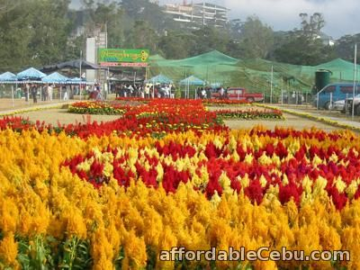 1st picture of Baguio Tour Package, Ridgewood Residences Offer in Cebu, Philippines