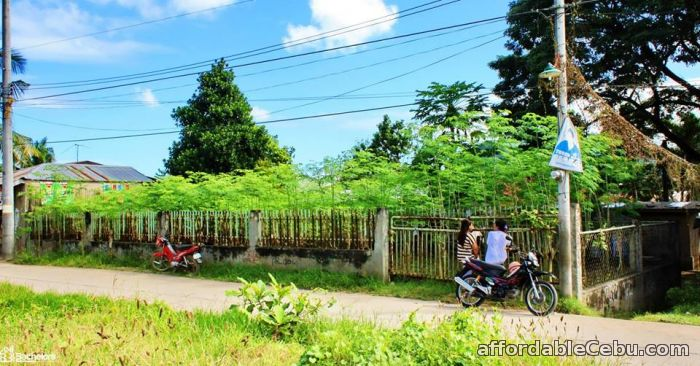 1st picture of FOR SALE : RESIDENTIAL LOT For Sale in Cebu, Philippines