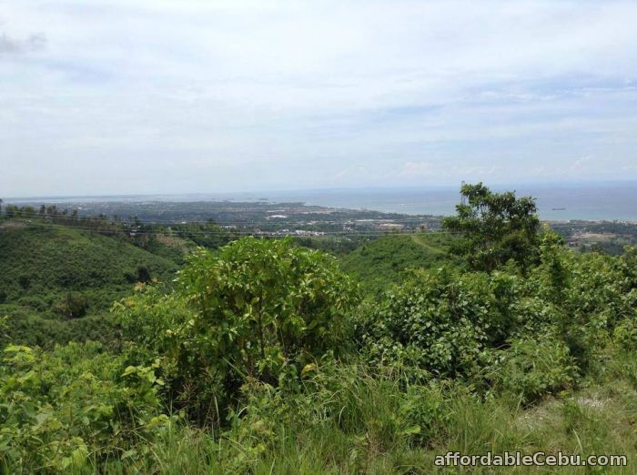 3rd picture of 60 sqm Lot Only in Tunghaan Minglanilla 5500 per sqm For Sale in Cebu, Philippines