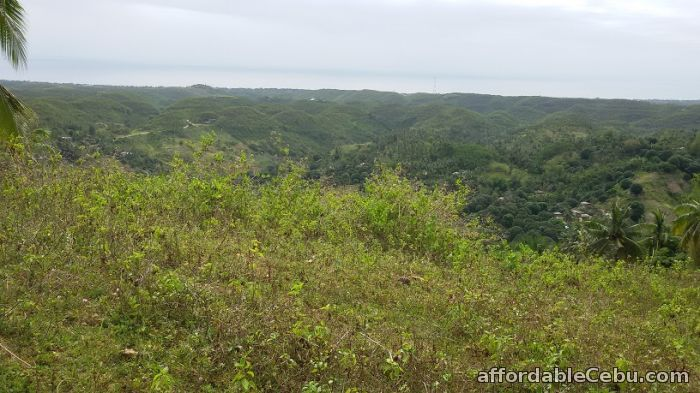 1st picture of Farm Land in Compostela For Sale in Cebu, Philippines