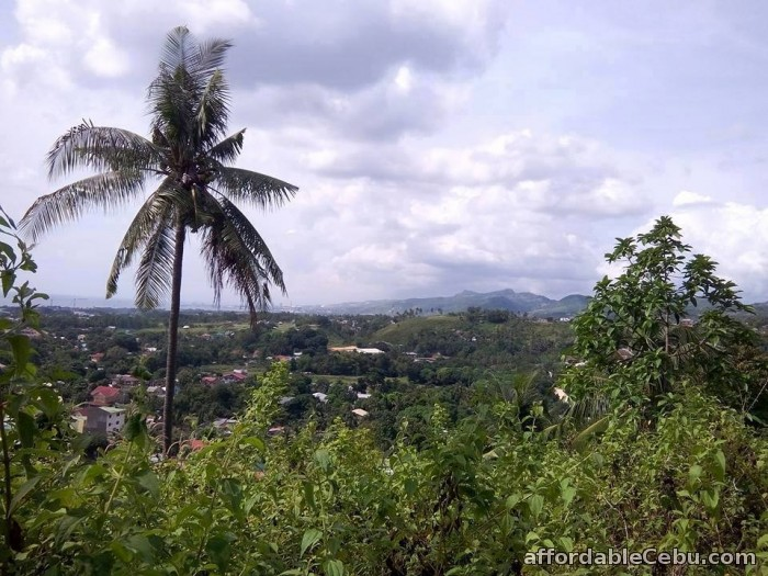 3rd picture of lot for sale in minglanilla cebu For Sale in Cebu, Philippines