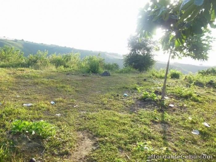 3rd picture of Lot for sale in Tubod Minglanilla Cebu For Sale in Cebu, Philippines