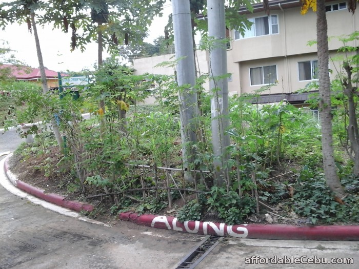 3rd picture of Nice Residential Lot inside Talamban Subdivision for SALE For Sale in Cebu, Philippines