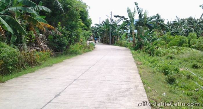 4th picture of lot for sale at Villa Lolita 2 Sub in Cubacub Mandaue City For Sale in Cebu, Philippines