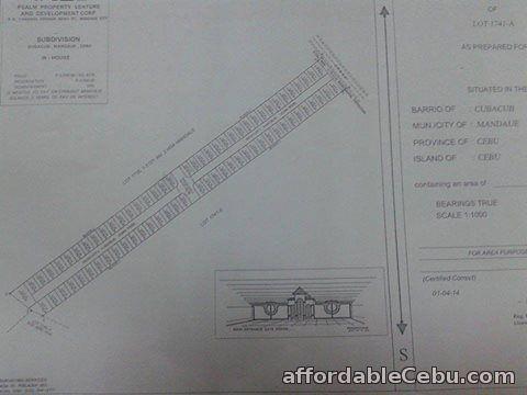 5th picture of lot for sale at Villa Lolita 2 Sub in Cubacub Mandaue City For Sale in Cebu, Philippines