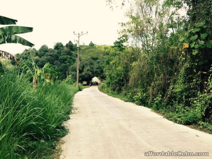 4th picture of Lot For Sale in Mabini Talamban, Cebu City For Sale in Cebu, Philippines