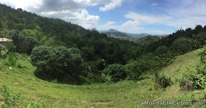 3rd picture of Lot For Sale in Mabini Talamban, Cebu City For Sale in Cebu, Philippines