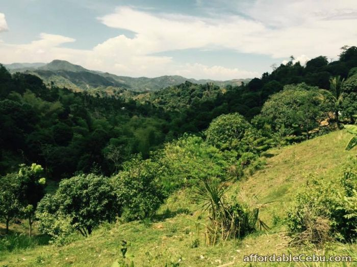 5th picture of Lot For Sale in Mabini Talamban, Cebu City For Sale in Cebu, Philippines