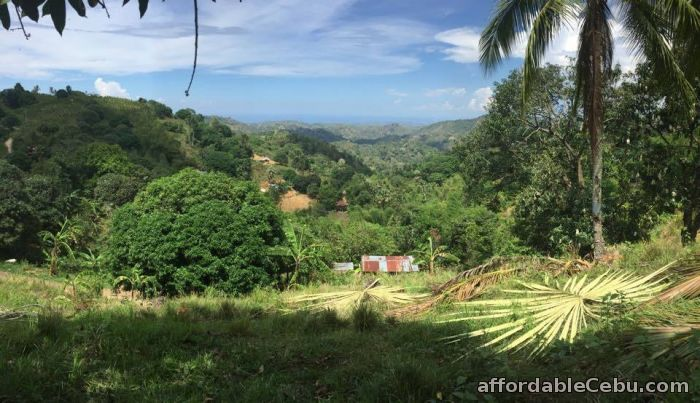 2nd picture of Lot For Sale in Mabini Talamban, Cebu City For Sale in Cebu, Philippines