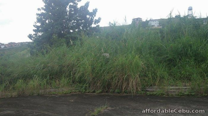 3rd picture of lot for sale at Pacific Heights Barangay Candulawan , Bulacao, Talisay City, Cebu For Sale in Cebu, Philippines