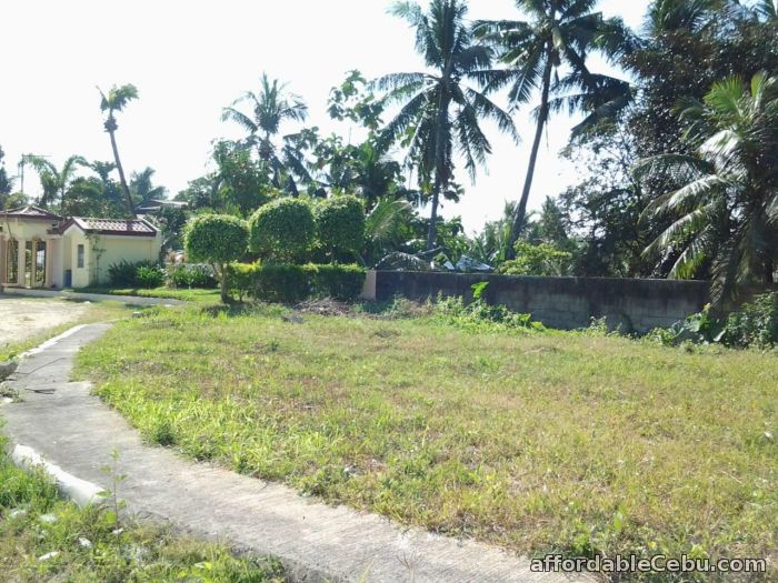 2nd picture of El Monte Grande Heights Lot Only For Sale in Cebu, Philippines