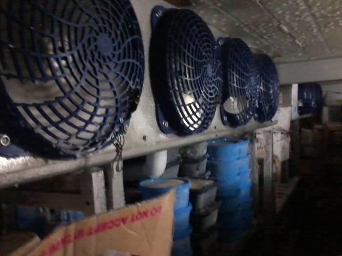 4th picture of Walk-in freezer & chiller technician in cebu 09952635252 Offer in Cebu, Philippines