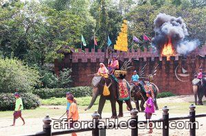 1st picture of Elephant show, Bangkok tour package Offer in Cebu, Philippines