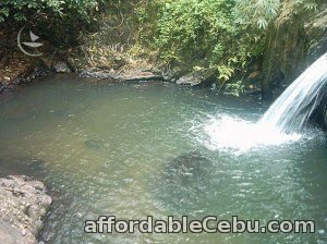 1st picture of Subic tour package, hiking to waterfalls, camping lunch - outdoor teambuilding Offer in Cebu, Philippines