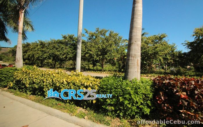 3rd picture of for sale lot in cebu For Sale in Cebu, Philippines