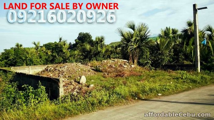 1st picture of LAND FOR SALE For Sale in Cebu, Philippines