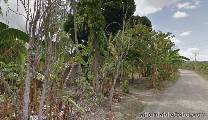 3rd picture of For sale Agricultural property located in Panabo/Tagpore Davao, Davao City For Sale in Cebu, Philippines
