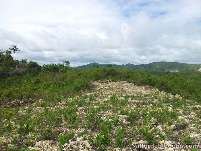 3rd picture of Lot for sale at yanessa country homes in consolacion,Cebu For Sale in Cebu, Philippines