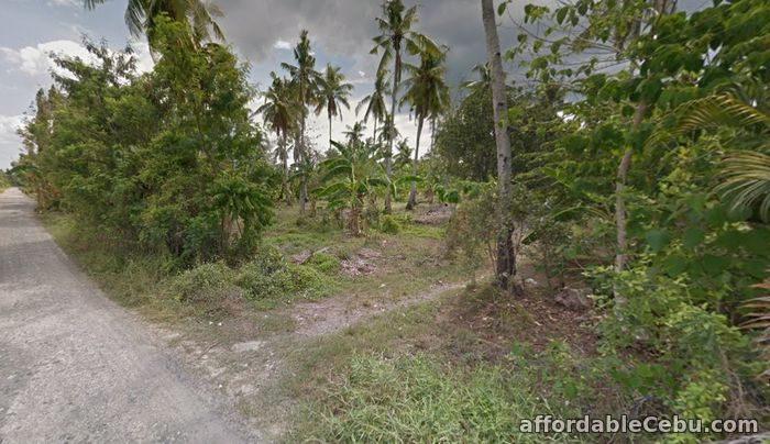 2nd picture of For sale Agricultural property located in Panabo/Tagpore Davao, Davao City For Sale in Cebu, Philippines