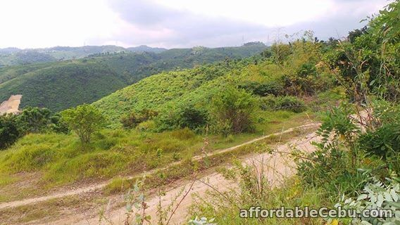 3rd picture of Lot at Penndave Manor 2 in Minglanilla,Cebu For Sale in Cebu, Philippines