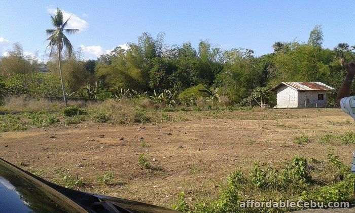 2nd picture of Greenwoods Executive Subdivision For Sale in Cebu, Philippines