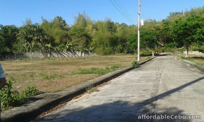 5th picture of Greenwoods Executive Subdivision For Sale in Cebu, Philippines