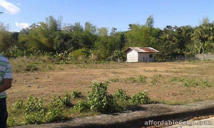 4th picture of Greenwoods Executive Subdivision For Sale in Cebu, Philippines