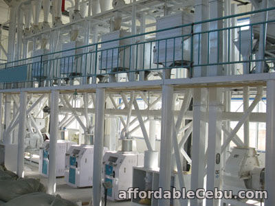 1st picture of Grain Processing Equipment Automatic Processing Plant For Sale in Cebu, Philippines