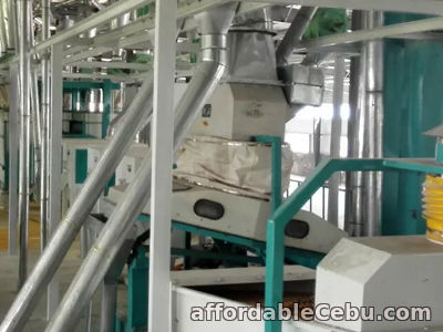 1st picture of Best Sold Grain Processing Equipment For Sale in Cebu, Philippines