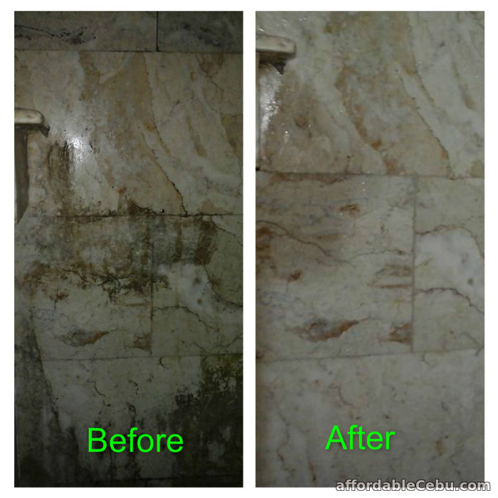 2nd picture of Cleaning Services Offer in Cebu, Philippines
