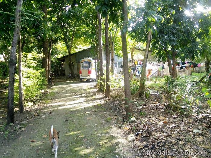 4th picture of Rush sale: Residential Lot Mahayahay, Bankal Lapu-Lapu City Cebu For Sale in Cebu, Philippines